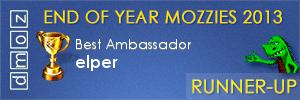 2013 - Best Ambassador Runner-Up